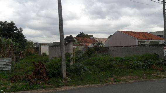 Terreno Para Venda Em São José Dos Pinhais, Ipe - 298012000_2-587885