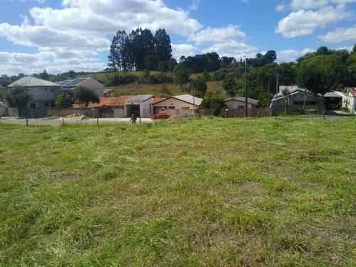 Terreno Para Venda Em Araucária, Fazenda Velha - 02_1-1727860