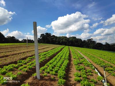 Construa Sua Chacara, Terrenos De 1200 M2 Plano Area Verde J