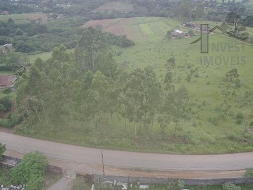 Cod 4962 - Linda Área Em Ibiúna - 4962