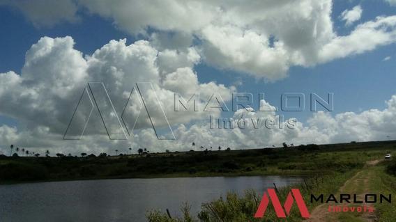 Fazenda Em Monte Alegre