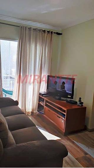 Apartamento Em Cachoeirinha - São Paulo, Sp - 327198