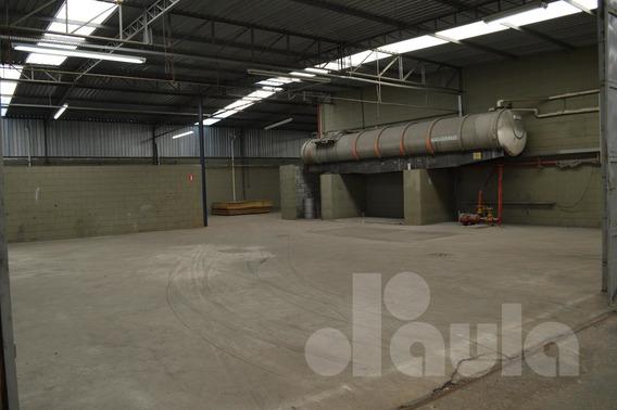 Galpão Industrial Em Santo André Com 3200 M² - 1033-10602