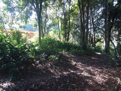 Terreno - Parque Das Artes - Ref: 6231 - V-6231