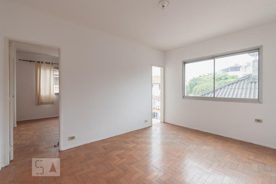 Apartamento Para Aluguel - Santa Teresa, 1 Quarto, 65 - 892996903