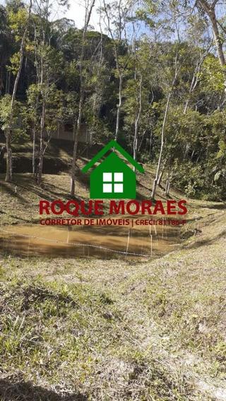 Terreno 10.000m² Com Casa Modesta. Ref0314