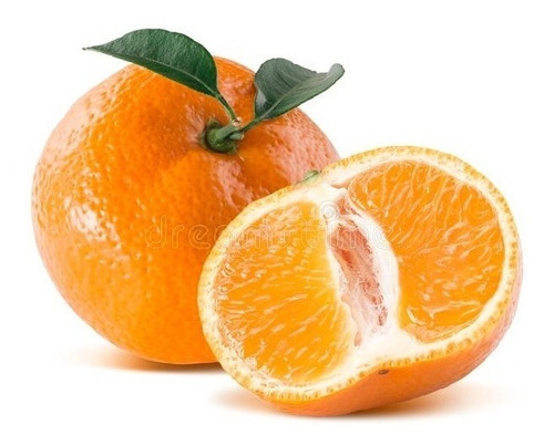 Frutales Citricos Mandarinos Injertados!!!