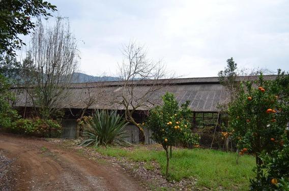 Sítio À Venda, 27418 M² Por R$ 639.000,00 - Serra Grande - Gramado/rs - Si0008