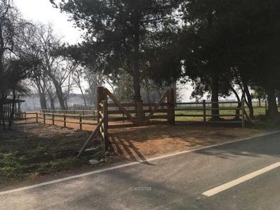 Sector Romeral - Camino Ampurdam