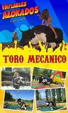 Alquiler De Toro Mecánico Y Samba En La Plata