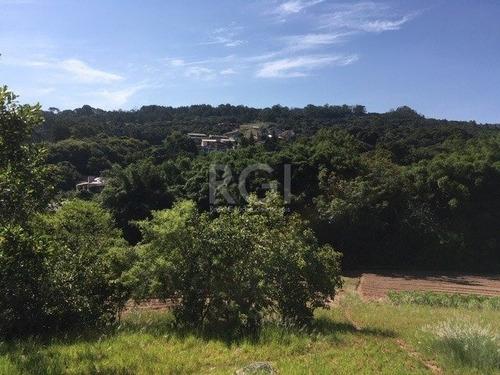 Area Em Vila Nova - Lu430623