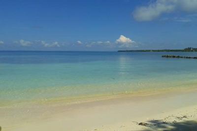 Isla Tintinpan - Paseo Y Estadia