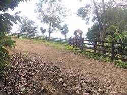 Finca En Venta En Lebrija Santander - Paraguay-código(078)