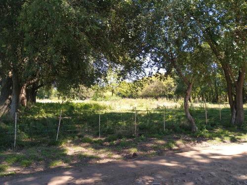 Lotes Terreno Pontevedra Dueño Oeste Zona C/escritura!