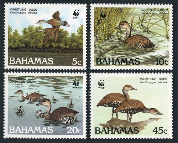 Fauna - Wwf - Bahamas 1988 - Serie Mint
