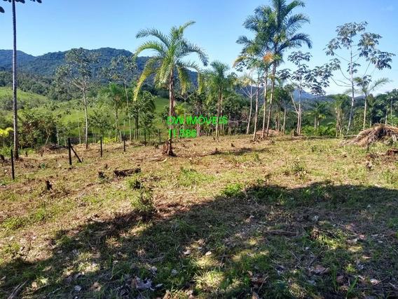 Miracatu/iguape/lindo Terreno Com Pomar, Bosque - 04990 - 67866030