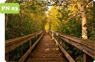 Adesivo Natureza Jardim Paisagem Bambu Por Do Sol Trigo Cristo Redentor Rio De Janeiro Floresta 9m² 3,00 A X 3,00 L