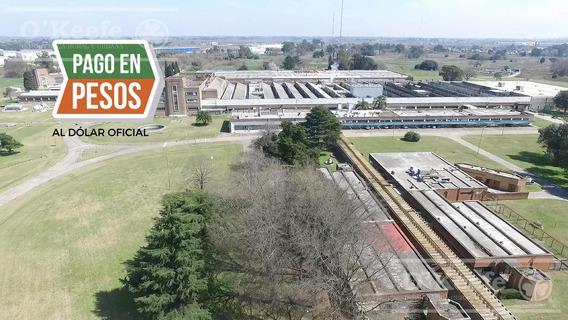 Deposito En Alquiler 9.300 M2 Rotonda Gutierrez - Ex Alpargatas - Florencio Varela Zona Sur