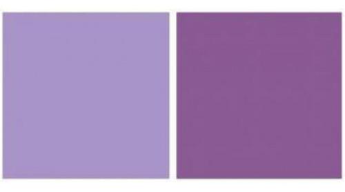 Imagem 1 de 2 de Repeteco - Linha Duo Lilás/roxo - Violeta