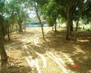 Terreno Para Venda Itapocoroi, Penha 1.183,00 - Te00018 - 3220538
