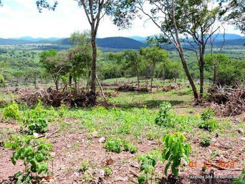 Fazenda A Venda Em Bonito - Ms (dupla Aptidão) - 999