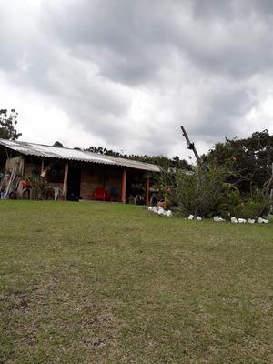 Venta Finca En Popayan-cauca