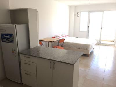 Alquiler Temporal Mitre 228 Rosario Zona Centro