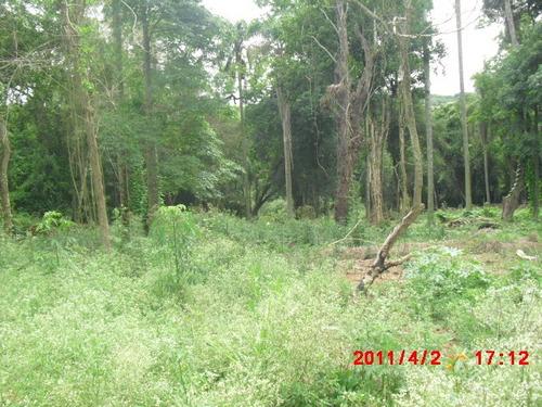 Imagem 1 de 7 de Terreno Com 1000m2
