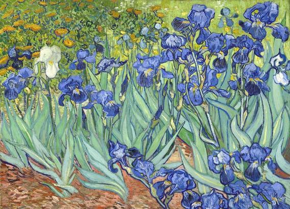 Cuadros Van Gogh Lirios 85x120 En Bastidor