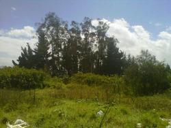 Se Vende, Terreno En El Sector De Guayllabamba