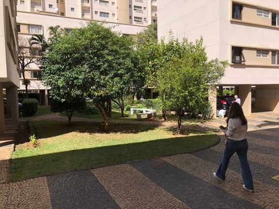 Apartamento Campinas Cambui