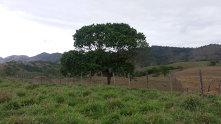 Fazenda Em Zona Rural , Itaocara/rj De 297000m² À Venda Por R$ 500.000,00 - Fa232078
