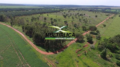 Oportunidade Chácara À Venda Uberlândia 20.000 M² Por R$ 130.000, Financia - 394