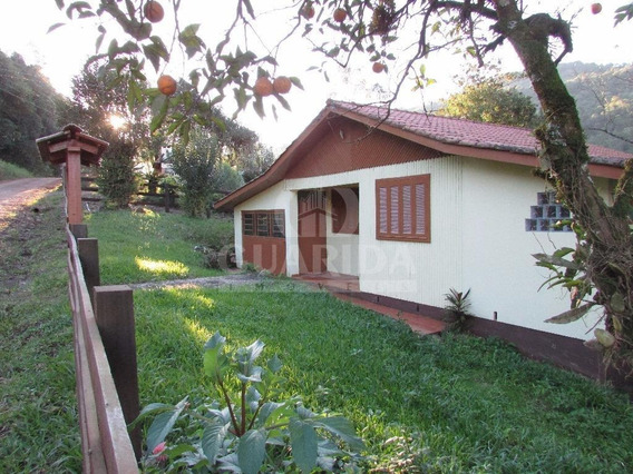 Chacara - Nova Santa Cruz - Ref: 154122 - V-154122