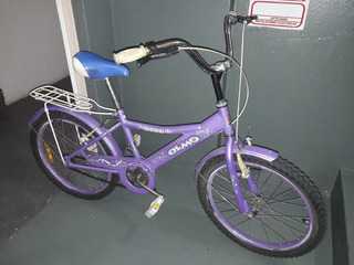 Bicicleta Rodado 20 Olmo