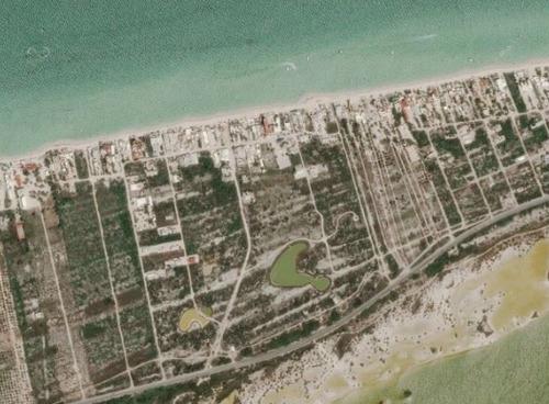 Imagen 1 de 7 de Terreno En Venta En Chicxulub Puerto A 450 M Del Mar Y Sobre Carretera Federal.