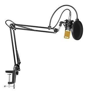 Neewer Microfono Condensador Anti Pop Cable Xlr Soport Brazo