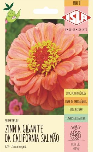 Semente De Zinnia Dobrada Califórnia Salmão Flor