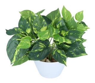 Planta Artificial Potus Verde Amarillo Decorativa Interiores