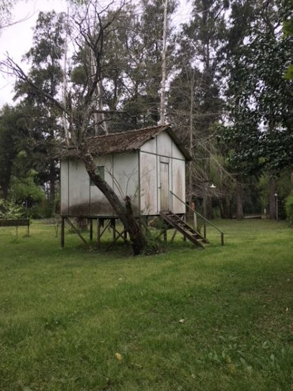 Casa En Venta Delta Tigre - Arroyo Arroyon - Lotes Vitale