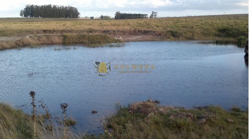 Campo De 35 Has Buen Suelo Con Tajamar, Cañada Agua Permante Y Casa. - Ref: 3175