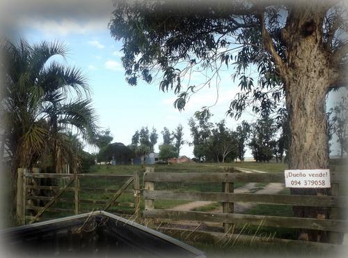 Campo De 35 Hectáreas (con Casa)