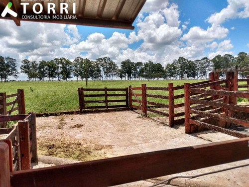Fazenda À Venda Em Uberaba - Fa00178 - 69390029
