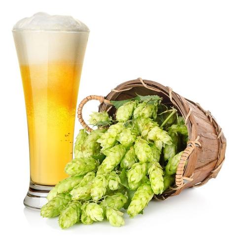 Imagem 1 de 6 de 20 Sementes De Lúpulo - Humulus Lupulus -trepadeira Cerveja