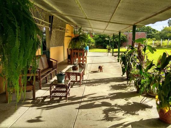 Casa De Campo 5 Hectáreas