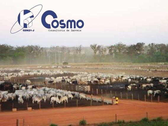 Fazenda, A Venda, Em Jussara - Go - Fa00061 - 33445385