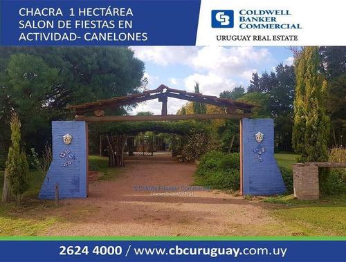 Chacra - Hectárea - Salón De Fiestas Ruta 6