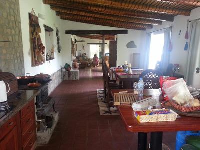 Alquilo Casa En El Mollar Tafi Del Valle