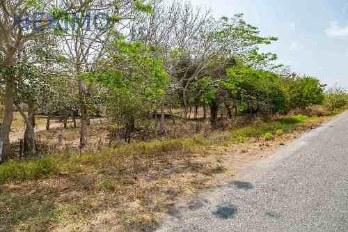 Se Vende Terreno En Altamira, Tamaulipas