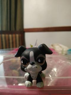 Little Pet Shop Perro Negro Con Ozico Blanco